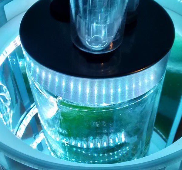 Photobioreactor Team are Growing their Algae